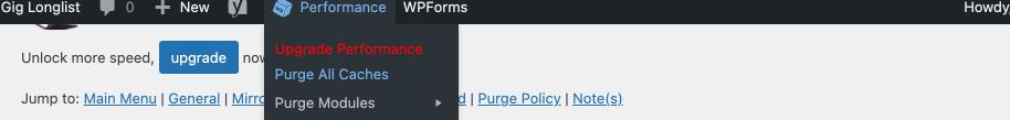 purge all caches